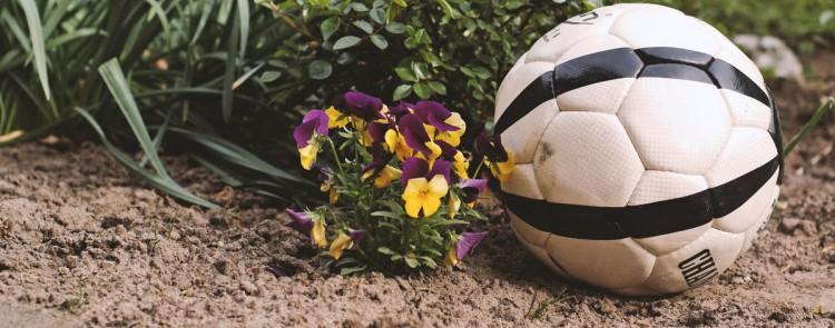 Wie viele herüberfliegende Bälle muss ein Nachbar in seinem Garten dulden?