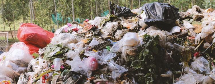 """""""Wilde Mülldeponie"""" im Garten muss entsorgt werden"""