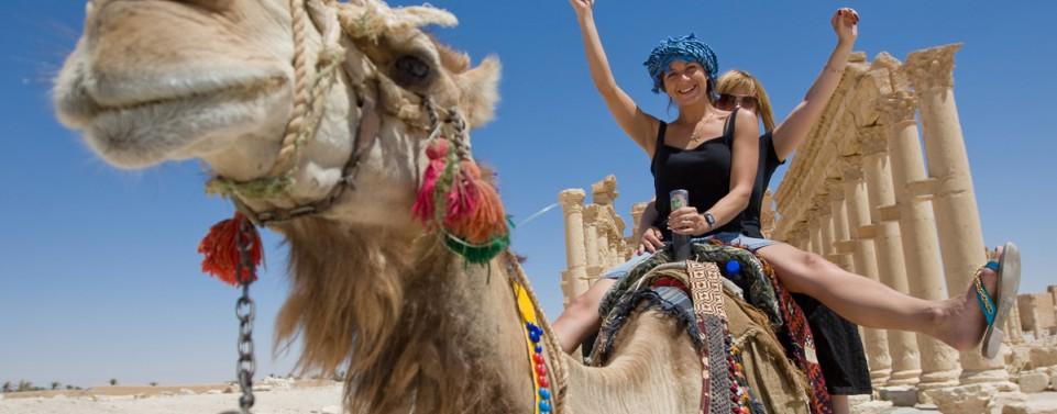 Kamelritt mit Sturzfolgen – haftet der Kamelführer?