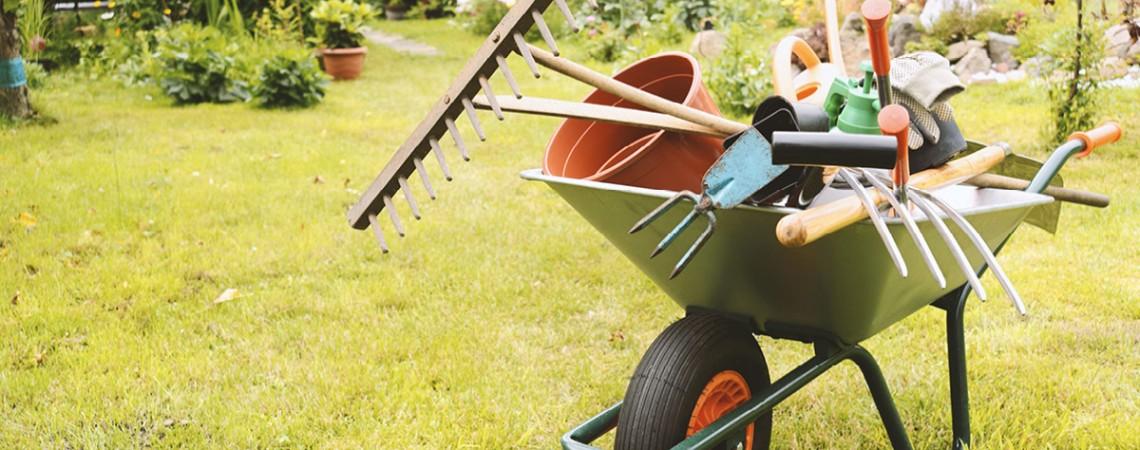 Was müssen Mieter im Garten tun?